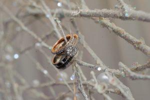 Gorgeous Wedding Rings Ideas
